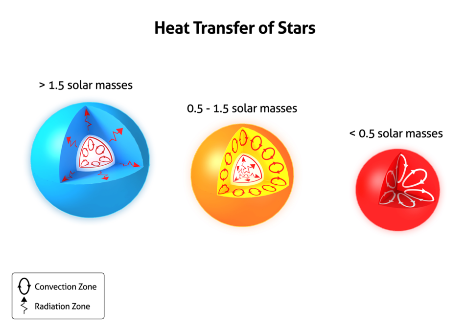 Heat Transfer in Stars