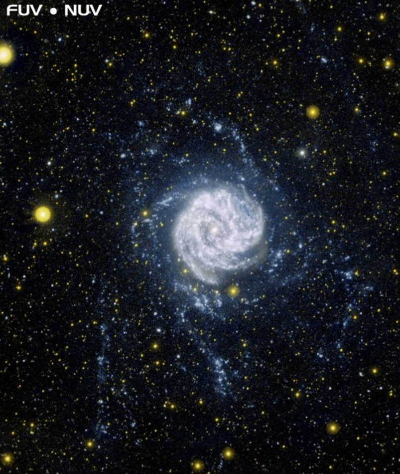 Southern Pinwheel Galaxy (M83) radio and ultraviolet