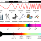 Mediumthumb spectrum of electromagnetic radiation